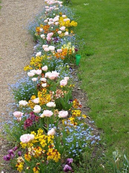 jardinroselyne.jpg