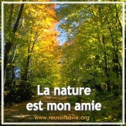 natureamie.jpg