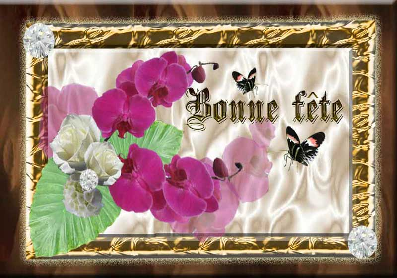 A la saint-Bernadette ... dans Citations, proverbes... fete_cadre_phalaeno_ros