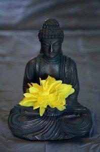 La dent du Bouddha ... dans Textes à méditer (239) semeunacte-du-pouvoir-des-croyances1-198x300