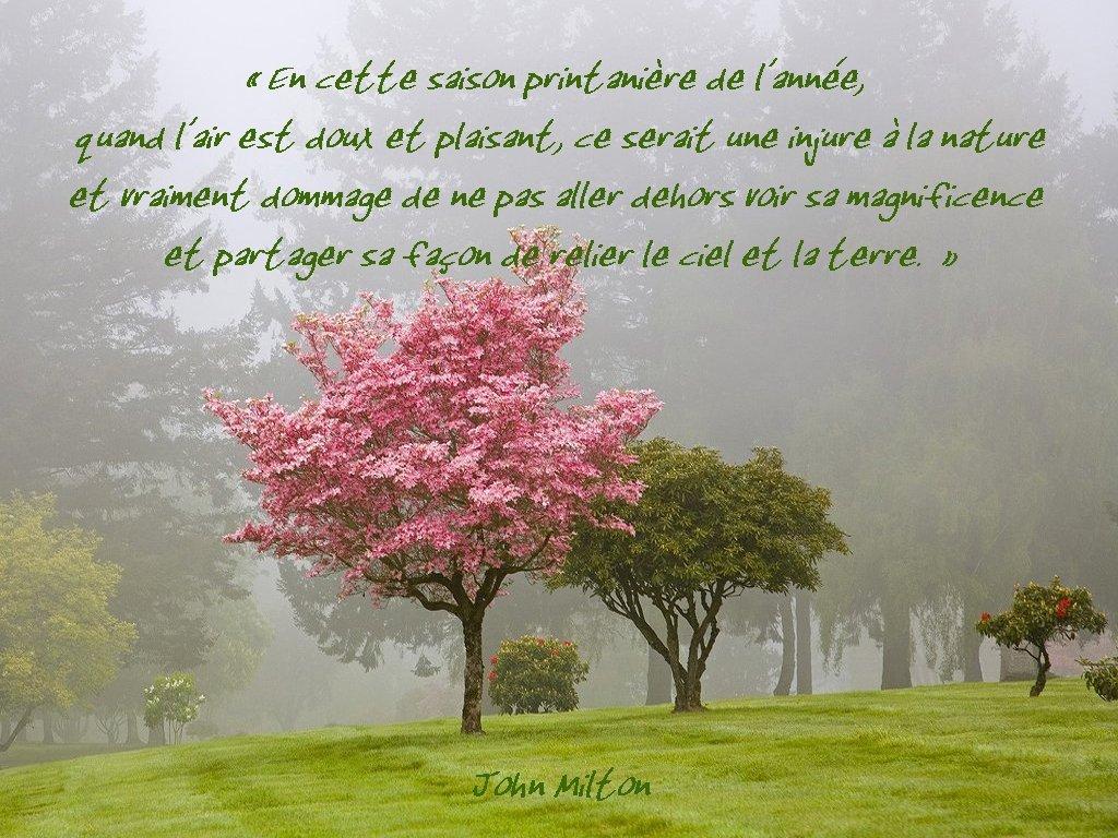 En cette saison printanière, ... dans Citations, proverbes... citation-J