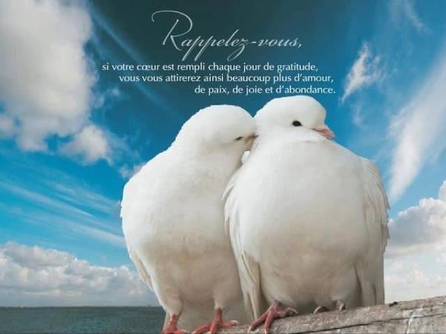 La gratitude ... dans Amour (119) 75500_335717879827429_204743842924834_891368_1776442763_n