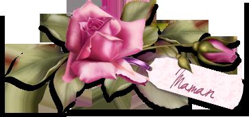 Rien ne vaut l'amour d'une mère ... dans Autres fêtes ou évènements 1304511694