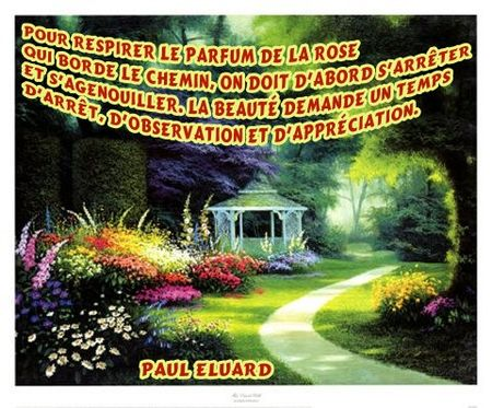 25574496_p dans Citations, proverbes...