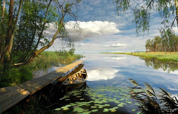 photo-igor-zenin-39