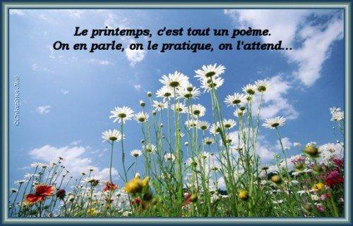 Le printemps, c'est tout un poème ... dans Les Saisons (102) 3779631929