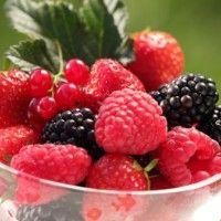 Cure de fruits rouges : le top des antioxydants ... dans Santé (166) 173247383