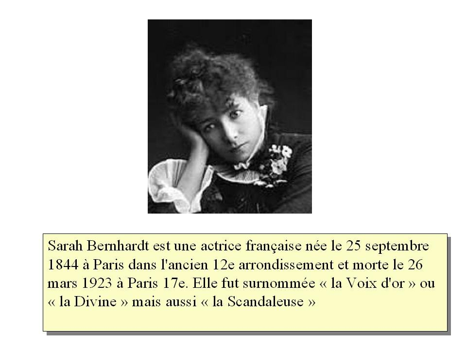 s.bernhardt dans Actualités