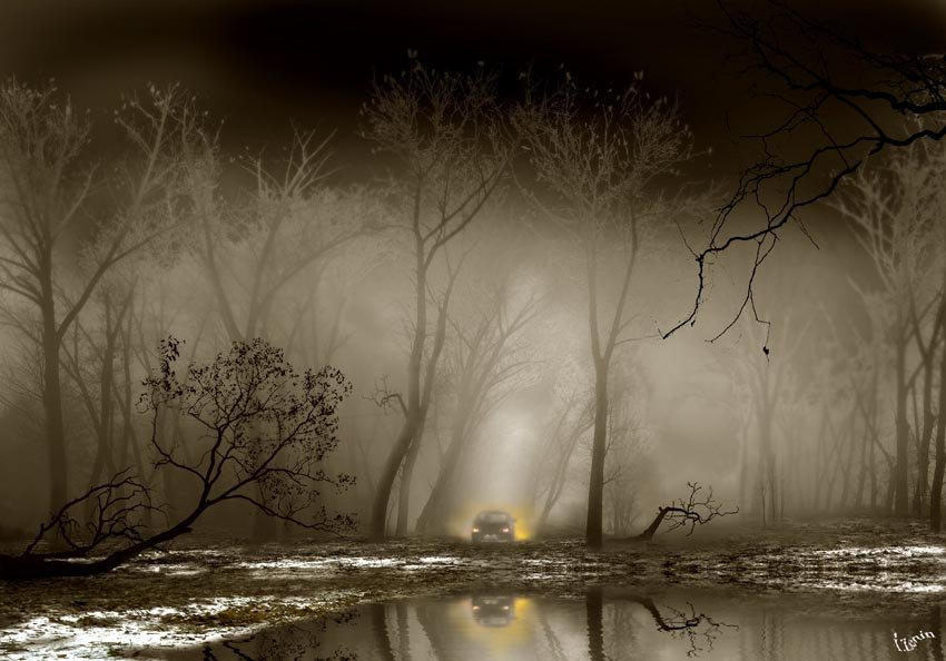 Photo Igor Zenin  28