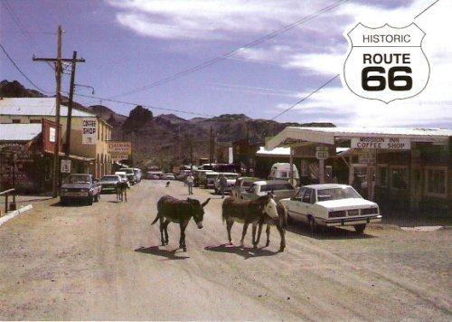 AZ-1011-Oatman-Route66