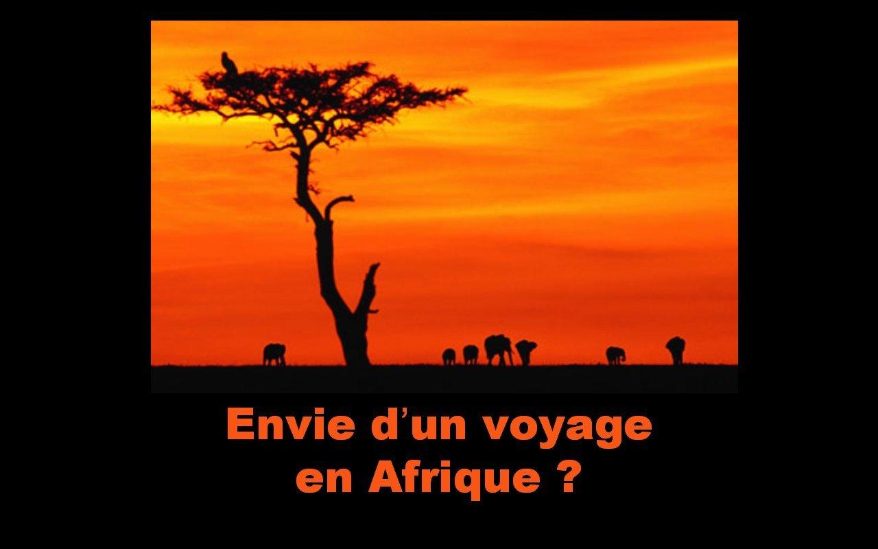 pps envie d'un voyage en Afrique