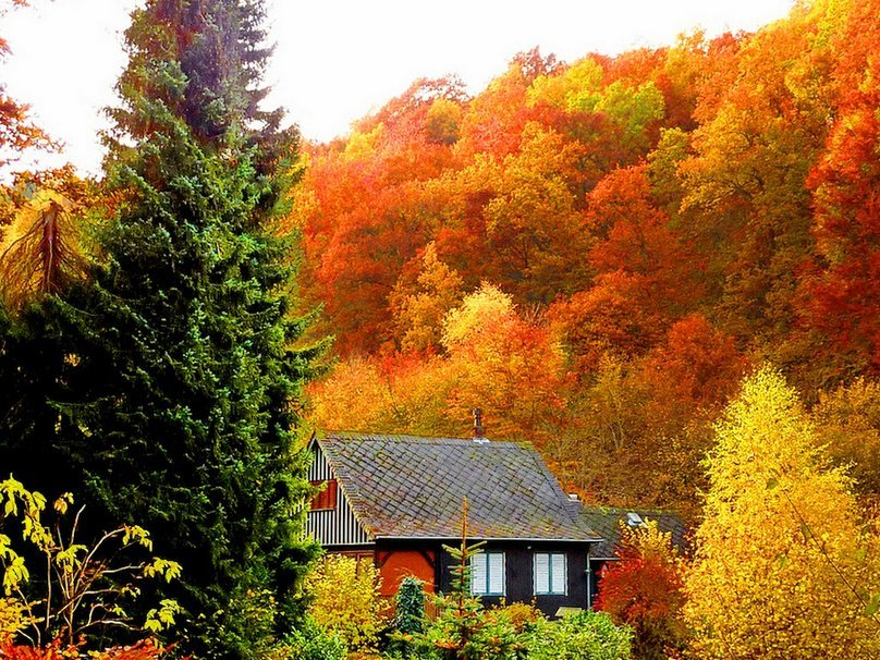 439215__small-house-on-a-hillside_p