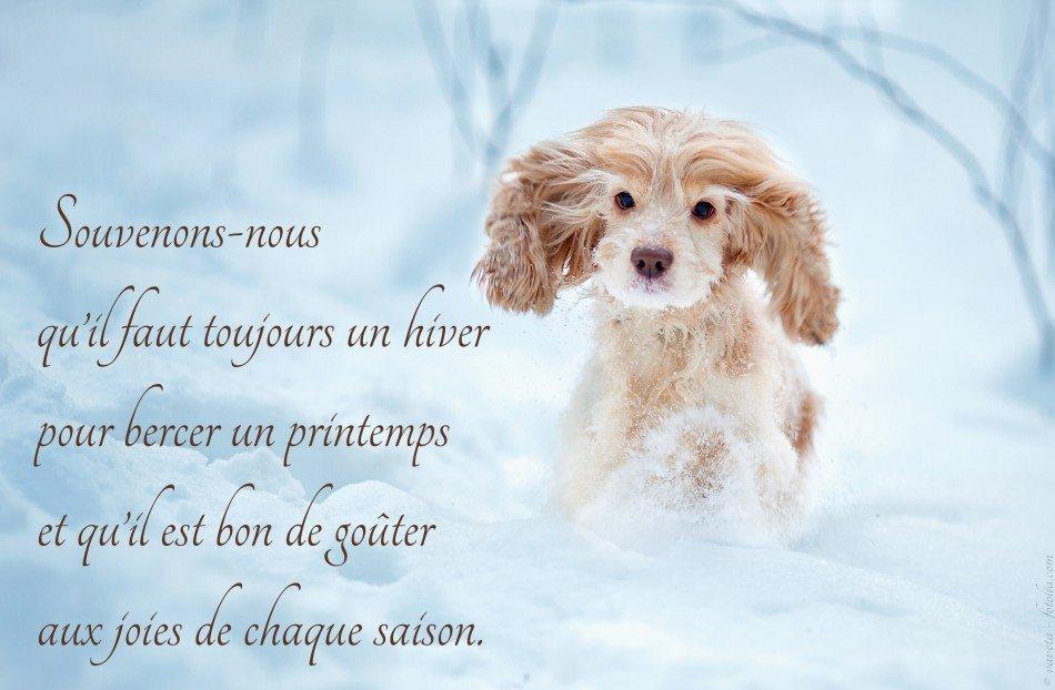 hiver-citation-2