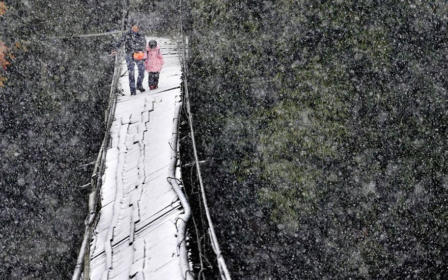 pont-neige