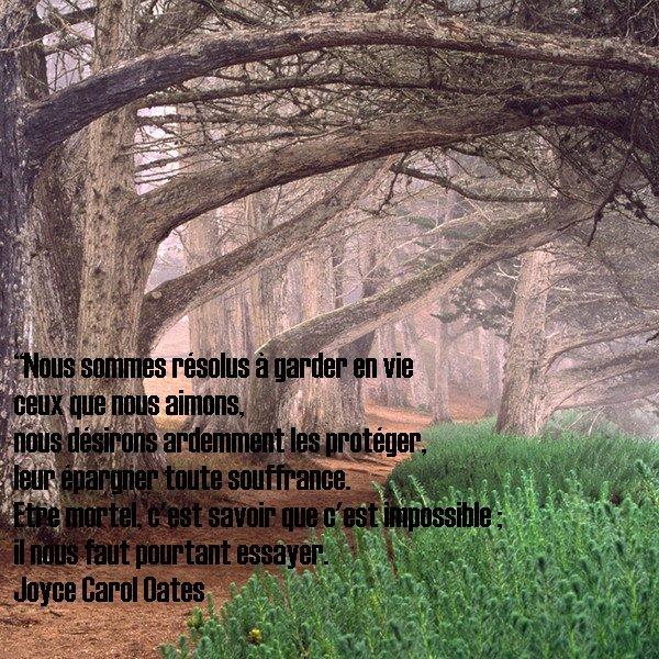 Citation de Joyce Carol Oates