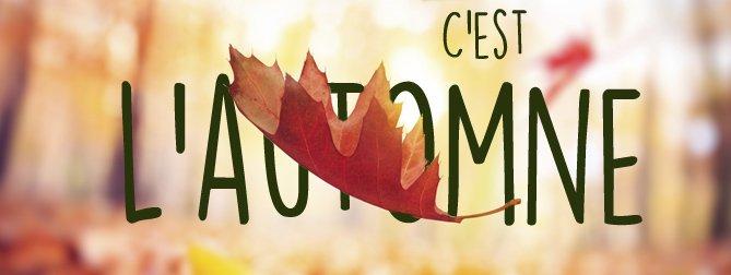 C automne