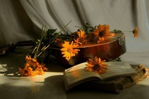 864231__flowers-book-and-mandolin_p