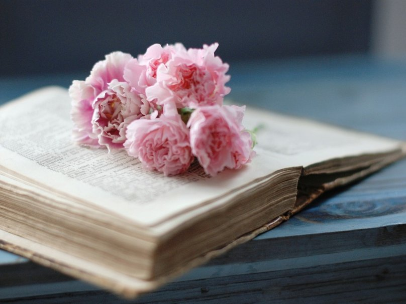 95346__book-and-flowers_p